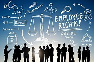 a graphic with the silhouette of employees and different employee rights listed under the Fair Labor Standards Act