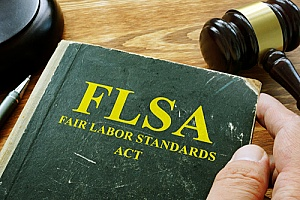 Fair Labor Standards Act book that describes who is FLSA exempt and who is not